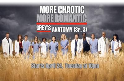 Grey's Anatomy (Season 3)